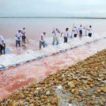 добыча-морской-соли