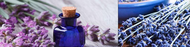 лавандовое масло лучшие эфирные масла +для лица