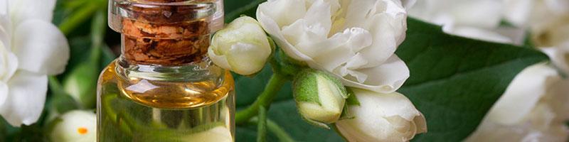лучшие эфирные масла +для лица - жасмин