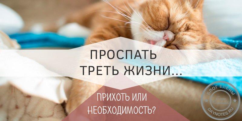 сколько нужно спать человеку чтобы выспаться