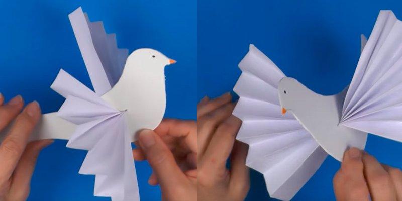 Картинки смешные, открытка из бумаги голубь