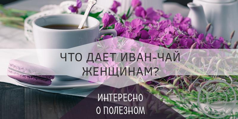 иван чай полезные свойства для женщин