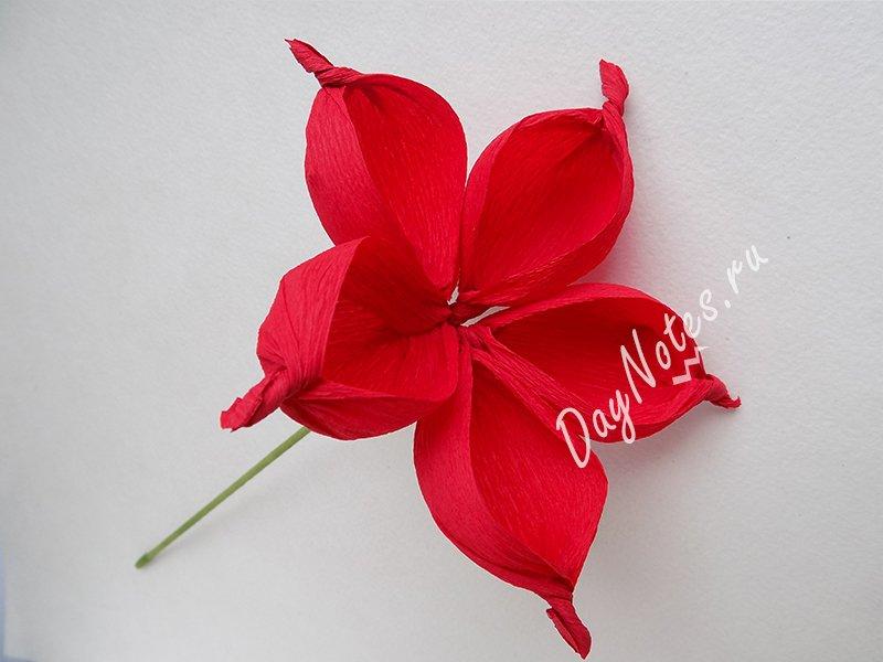 простой цветок из гофрированной бумаги