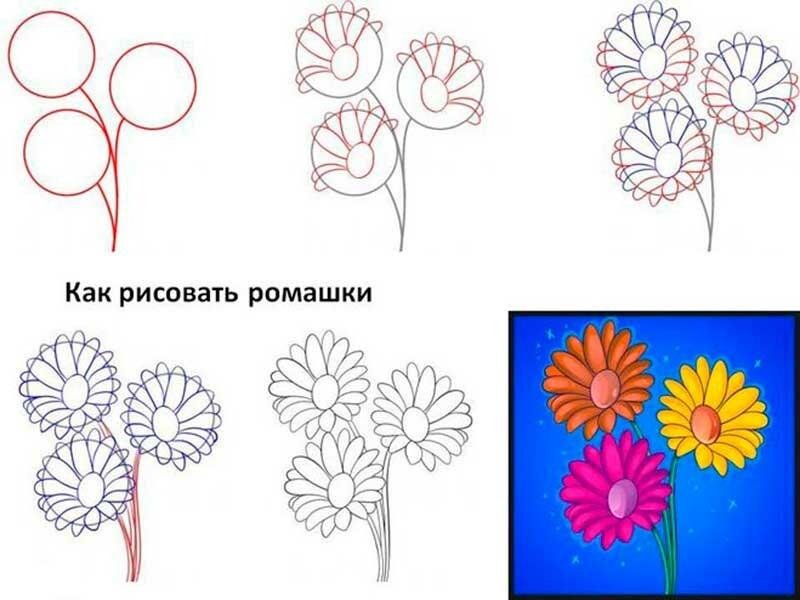 учителя, как нарисовать цветы открытки поэтапно были воспитаны, привыкли