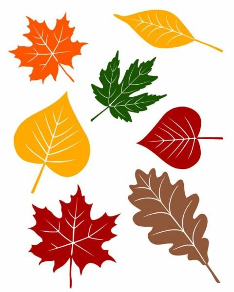 самых листья осенние картинки распечатать на цветной бумаги предназначены