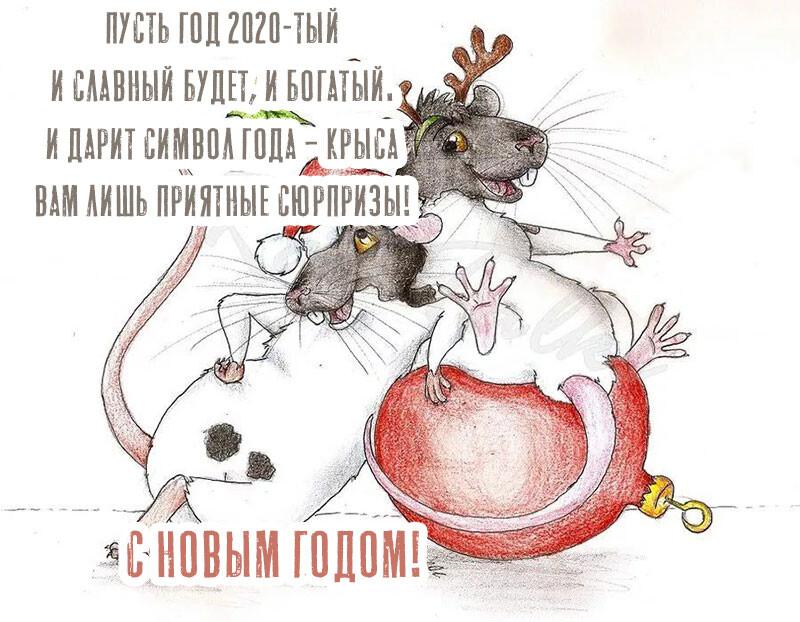 философские поздравления с новым годом крысы сколько