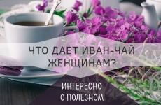 14 целебных элемента иван-чая для женщин