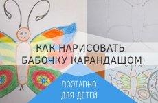 Как просто нарисовать бабочку карандашом — поэтапное фото