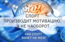 Спорт делает нас умнее и счастливее — научный поход