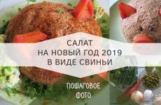Салат на новый год 2019 в виде свиньи  — сметут со стола первым. Рецепт салата с курицей.