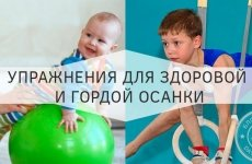 Упражнения для крепкой ровной спины у малышей и школьников
