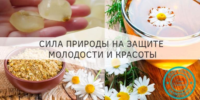Рецепт для лица из ромашки